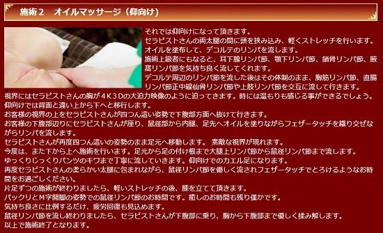 高田馬場シャングリラの施術内容